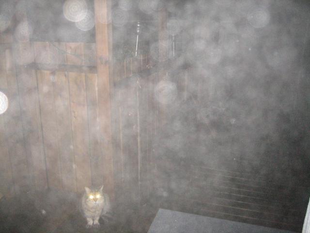 Fog of orbs
